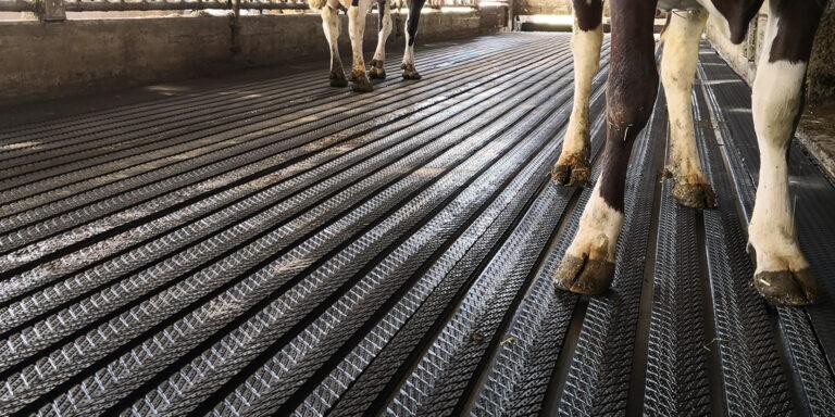 Magellan Matten im Stallgang: Für gesunde Klauen und weniger Emissionen