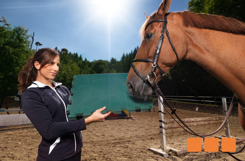 Wohlfühlboden für ihr Pferd